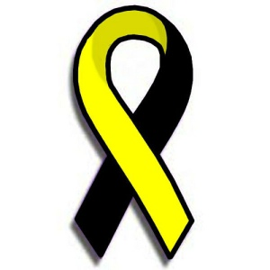 The PTS awareness ribbon.